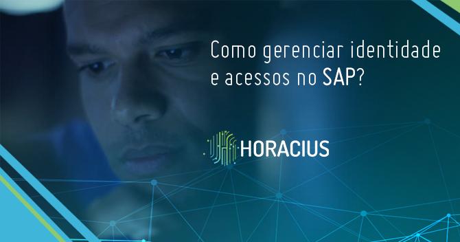 Como gerenciar identidade e acessos no SAP?